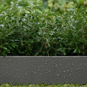 Inspire Modern Garden Edging